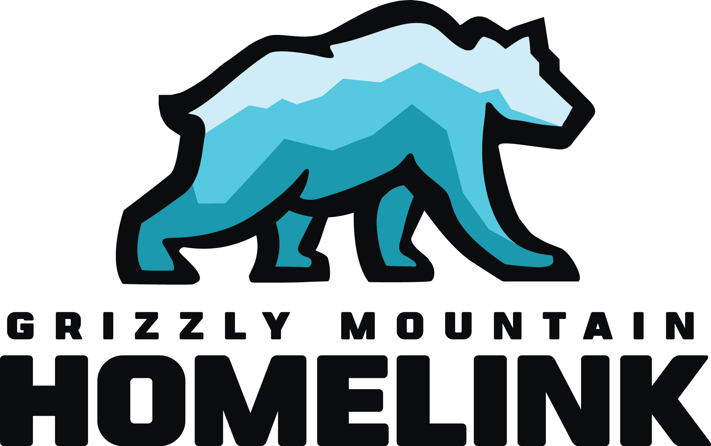 Grizzly Mountain Homelink